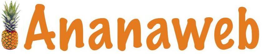 Ananaweb... Votre site internet à prix tout compris